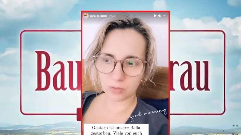 Bauer Sucht Frau Das Große Wiedersehen 2021
